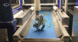 robot fide ekimi